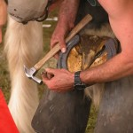 Farrier legend holds clinics, contest in Aust